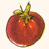 tomato recipes from a small, family farm