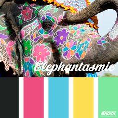 Elephantasmic. Brights. Raspberry pink. Teal. Sunset yellow. So elegant. Brand identity color palette inspiration. #brandidentity #colorpalette