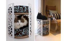 Clique Arquitetura - Seu portal de Ideias e Soluções - Casa Decorada para Gatos