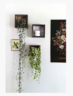 We love these wall hanging plants. A creative way to brighten up a room x