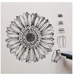 Mandala Art Lesson, Mandala Drawing, Art Drawings Sketches Simple, Pencil Art Drawings, Chalk Drawings, Doodle Art Designs, Diy Canvas Art, Pen Art, Art Sketchbook