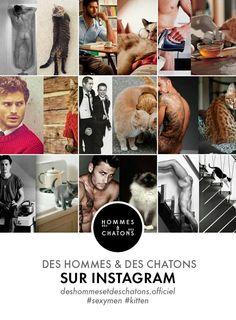 Les hommes et les chatons sur Instagram ! émoticône smile https://www.instagram.com/deshommesetdeschatons.officiel/
