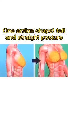 Body Weight Leg Workout, Full Body Gym Workout, Gym Workout Videos, Gym Workout For Beginners, Fitness Workout For Women, Easy Workouts, Bora Malhar, Yoga Facts, Gymnastics Workout