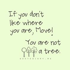 Not a tree....