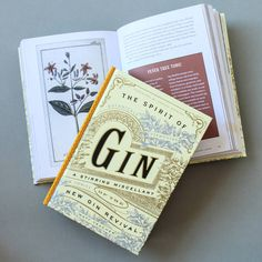 the spirit of gin book for gin lovers by berylune | notonthehighstreet.com