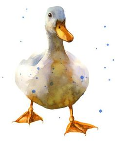 "Daily Paintworks - ""Watercolor Duck"" - Original Fine Art for Sale - © Alison Fennell"