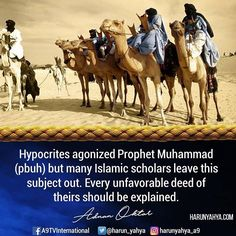 #Hypocrites agonized Prophet Muhammad (pbuh) but many Islamic scholars leave this subject out. Every unfavorable deed of theirs should be explained #tv #broadcast 📽📡en.a9.com.tr #islam #God #quran #Muslim #books #adnanoktar #istanbul #islamicquote #quote #love #Turkey #art#artistic #fashion #music #luxury#travel #nature #photoshoot #photooftheday #worldwide #london #newyork #washingto