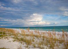 Santa Rosa Beach Florida at Grayton Beach State Park. The beaches of South Walton are SO beautiful.