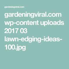gardeningviral.com wp-content uploads 2017 03 lawn-edging-ideas-100.jpg