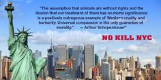Petition in support of new bill to remove DOH control from the NYC ACC and make it a no-kill entity
