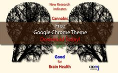Spread the word Enjoy a FREE gift from the CBD Medical Journal  Install this FREE Google Chrome Theme for cannabis and CBD enthusiasts. Just click below and install from Google's Chrome web store.   Sign up BELOW for our newsletter and never miss an article on the medical marijuana industry! Related Posts:Free ebook: …