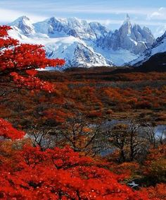Autumn in Glaciers National Park, Patagonia – Argentina