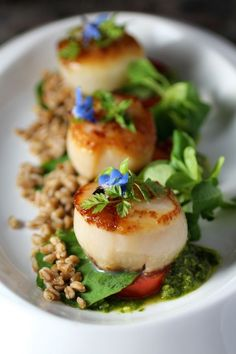 Scallop, Farro, Micro Greens, Lemon Basil Sauce by Taste With The Eyes - Germany Rezepte Ideen Fish Recipes, Seafood Recipes, Gourmet Recipes, Cooking Recipes, Sauce Recipes, Fish Dishes, Seafood Dishes, Fancy Dishes, Scallop Recipes