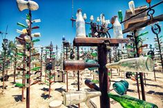 Fun Stops on the Drive from Los Angeles to Las Vegas- Bottletree Ranch