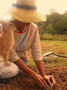Two of my greatest joys - cat companion, gardening