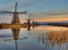 Kinderdijk Windmills, David Knopfler