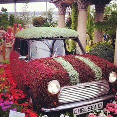 A classic MINI during #nationalgardeningweek at Chelsea Flower Show