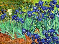 "dominusvenustas: "" Vincent van Gogh, Irises, 1889 Theme of the day in case you hadn't guessed…. Van Gogh's irises. Van gogh's glorious irises. The vibrant colours and wonderful rhythms say all. Art Van, Van Gogh Art, Van Gogh Pinturas, Vincent Van Gogh, Claude Monet, Rembrandt, Iris Painting, Van Gogh Paintings, Flower Paintings"