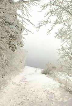 long, snowy road