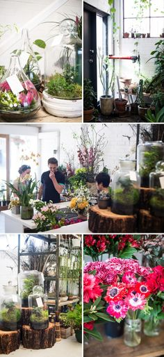 Loose Leaf Plants & Flowers - 31 Sackville Street, Collingwood, Melbourne  |  Adeline & Lumiere