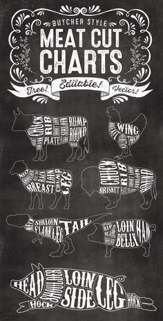 Butcher meat cut chart illustrations