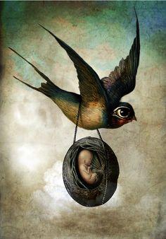 Catrin Welz-Stein, Precious Flight