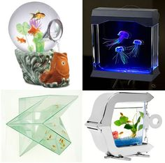 Small fish tanks room kids and betta on pinterest for Fish tank heater petco