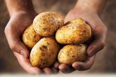 Kartoffelmaske-wirkungsvoll gegen Faltenbildung und feucht die Haut an