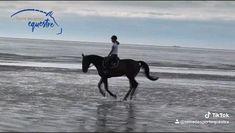 Westerns, Woman Riding Horse, Godzilla, Videos, Equestrian, Exercise, Horses, Pets, Board