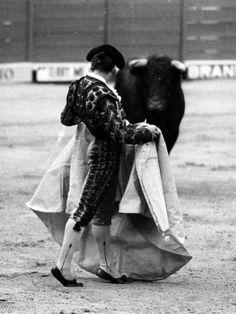 RAFAEL DE PAULA y su duende con el capote Pamplona, Spain, Vintage, Sun, Flamingo, Wallpaper Ideas, Pictures, Gypsy, Drawings