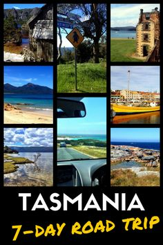 Road Trip in Tasmania: Self-Drive Itinerary for Nature Lovers Tasmania Road Trip, Tasmania Travel, Melbourne, Sydney, Great Barrier Reef, Holiday Destinations, Travel Destinations, Places To Travel, Places To Go