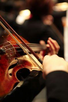 POV - violinist by Cameron Ogilvie, via 500px