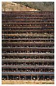 Fukuyama, 2004  C-print mounted on Plexiglas in artist's frame  120 1/4 x 81 1/2 inches; 305 x 207 cm