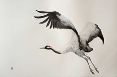 "If you're interested in learning more about ""Crane"" by Karl Martens please contact us."