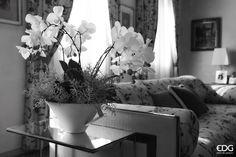Orchidea con vaso | EDG Enzo De Gasperi
