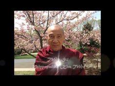 Thân và Tâm (Body and Mind) - Thiền Sư Khippapañño Kim Triệu - YouTube