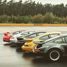 Spoilt for choice on Humpday ⚫#911
