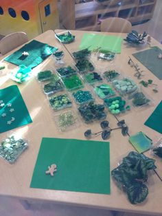 "Shades of green at Opal Museum Preschool, image shared by 'The Center for Children's Learning' ("",)"