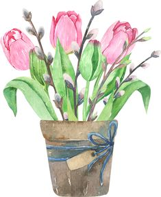 Watercolor tulips composition in wood box.Bouquets of flowers, leaves, willow and branch in pots. Spring compositions of tulips. Realistic Pencil Drawings, Art Drawings For Kids, Plant Illustration, Watercolor Illustration, Watercolor Flowers, Watercolor Paintings, Watercolors, Decoupage, Rose Wallpaper