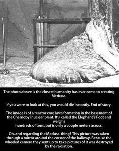 Funny pictures about 28 Years Since Chernobyl. Oh, and cool pics about 28 Years Since Chernobyl. Also, 28 Years Since Chernobyl photos. Nagasaki, Hiroshima, The More You Know, Good To Know, Reactor Nuclear, Chernobyl Reactor, Que Horror, Pseudo Science, Creepy Stories