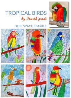 Parrot or tropical bird art lesson