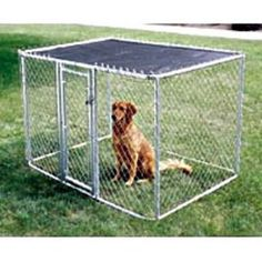 Backyard idea for doggie. She needs one of these, potty area.