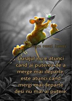 Romanian Language, True Words, Motto, Cool Words, Faith, Thoughts, Feelings, Quotes, Motivational