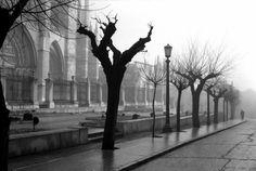 León, fotos antiguas, la catedral hacia 1960