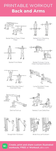 Back and Arms:my visual workout created at WorkoutLabs.com • Click through to customize and download as a FREE PDF! #customworkout