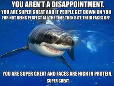 positive self-esteem shark