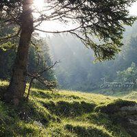 Alpine morning by =Fra-Emer on deviantART