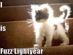 I is Fuzz Lightyear