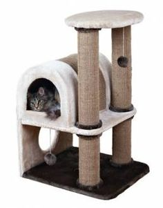 52 Ideas Cats And Kittens Diy House Cat Trees Diy Easy, Cool Cat Trees, Diy Cat Tree, Homemade Cat Trees, Sisal, Cool Cats, Diy Jouet Pour Chat, Pet Food Storage, Cat Towers