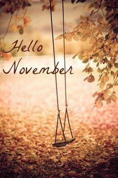 Superbe Hello November